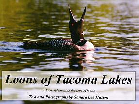 Loons of Tacoma Book